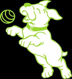 Dog Waco